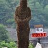 Пчелиная роба - необычные китайские соревнования