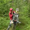 В лесу ничуть не хуже...