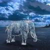 «Цифровая вода» - фотофантазии В_О_К_Е